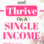 Save money and thrive in a single income household. So many great tips and ideas on how live frugally but maintain the same quality of life!