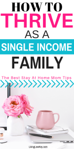 Thriving as a one income family.
