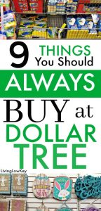 Make the dollar tree store your one stop for everyday essentials.