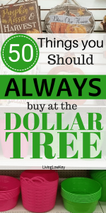 List of the best things to buy at the Dollar Tree so you can score some great deals.