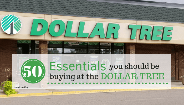 Looking to save money on every day essentials. Then you have to start shopping at the dollar tree so you can join in on the great deals.