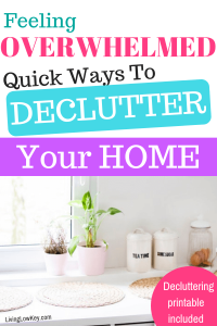 What a great article! I can't wait to start decluttering my house today.