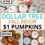 dollar tree pumpkins