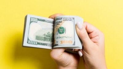 earn 100 dollar per day